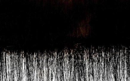 Een foto van helmgras aan een rivier met een weerspiegeling in het water