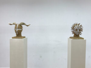 Kunstwerk van de expositie Mar Sin Plastico