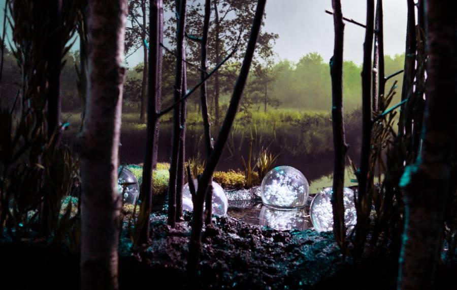 De gecultiveerde wildernis van Marielin Simons